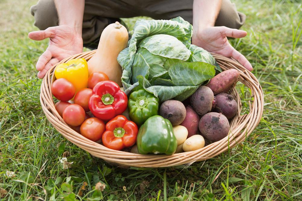 City farmer carrying basket of veg on a sunny day